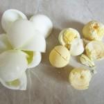 белок и желток яиц яйца