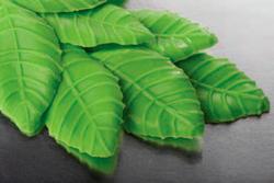 Яшма зеленый