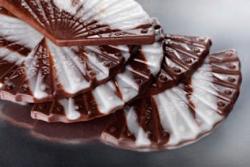 ВЕЕР Полуфабрикат глазурь шоколадная