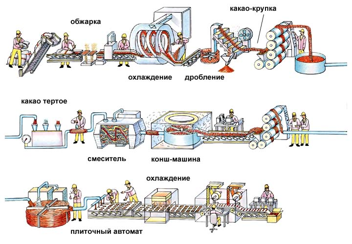 схема производства какао порошка изготовление