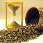 Обработка и хранение семян льна