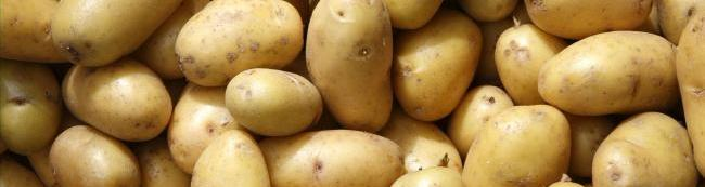 картофель куча много png фон