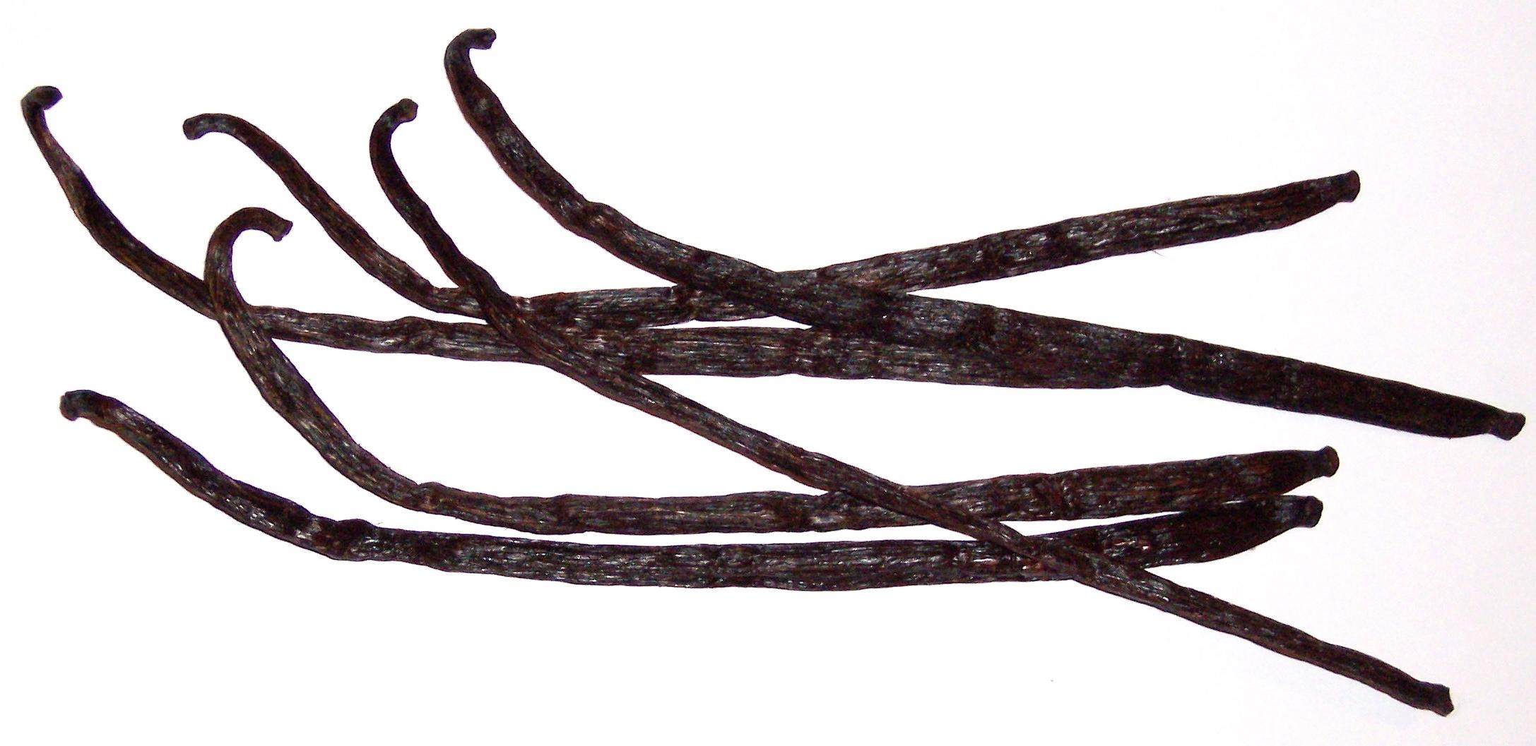 Vanilla-Bean-Dried