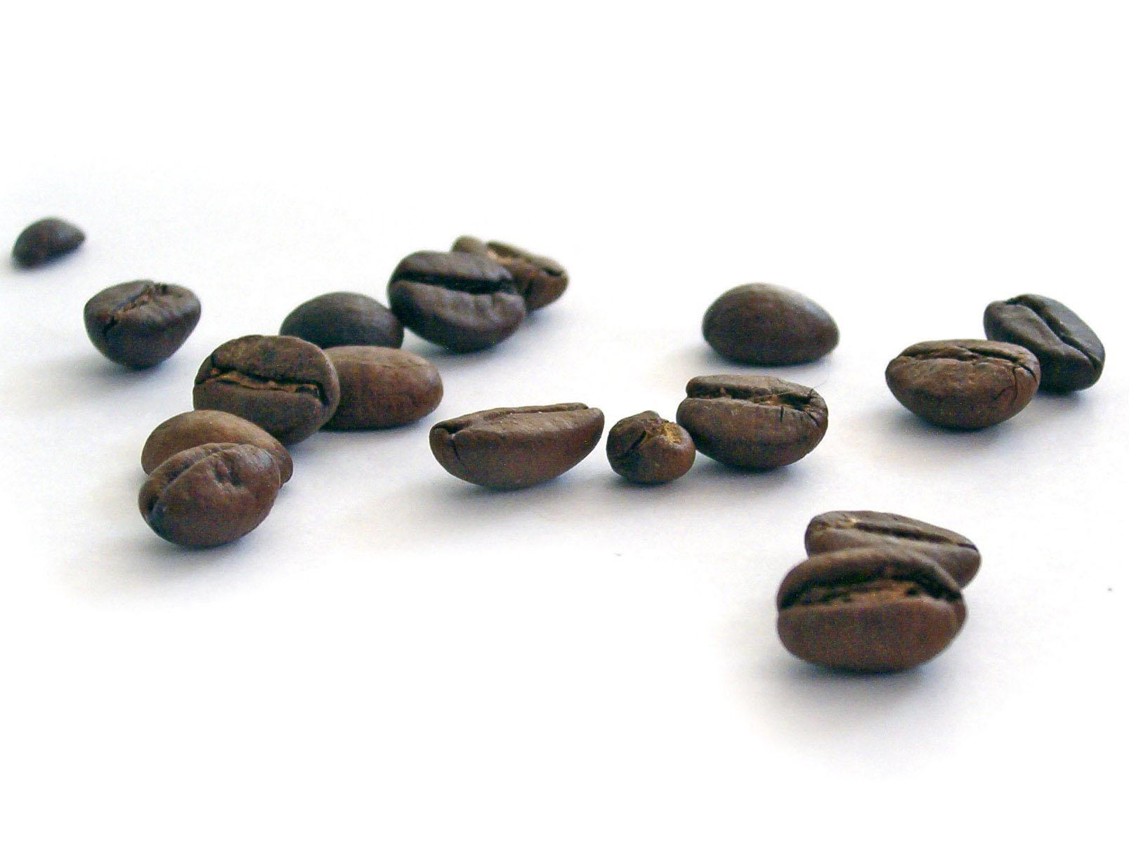 кофе в зернах, кофе купить в Москве, кофе зерно, кофе зерновой, кофе, кофе купить, кофе купить недорого, кофе купить оптом
