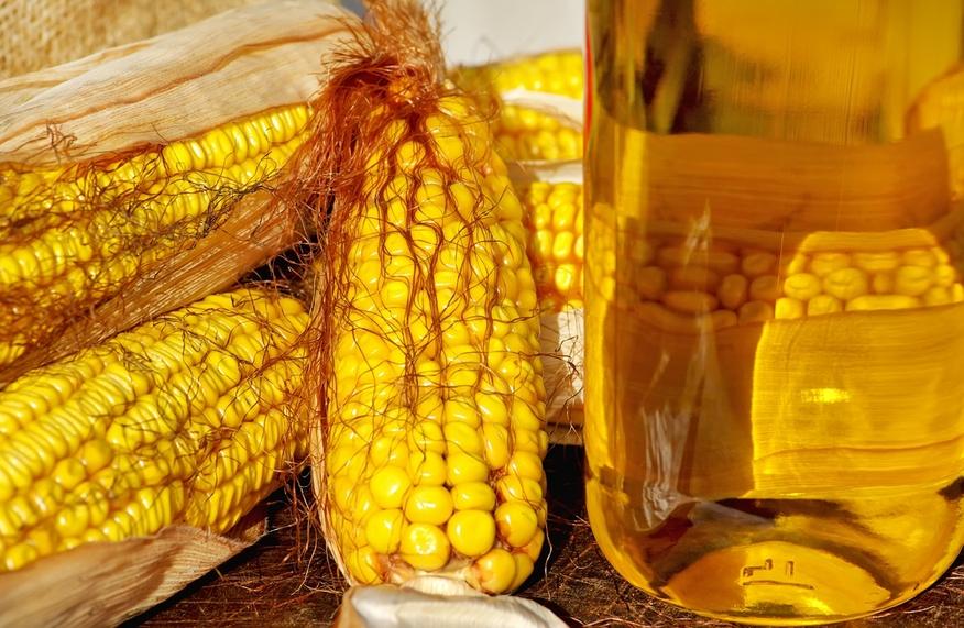 кукурузное масло купить оптом недорого в москве фото большое кукуруза бутылка арт