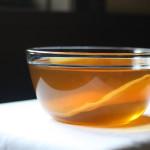 Японский чайный гриб (медузомицет)
