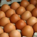 Как определить свежесть куриных яиц в магазине?