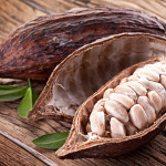 Импортирование какао-бобов в РФ заметно снизилось