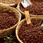 Как можно зарабатывать на выращивании Кофе?